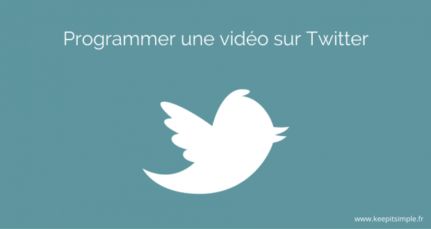 programmer-tweet-video
