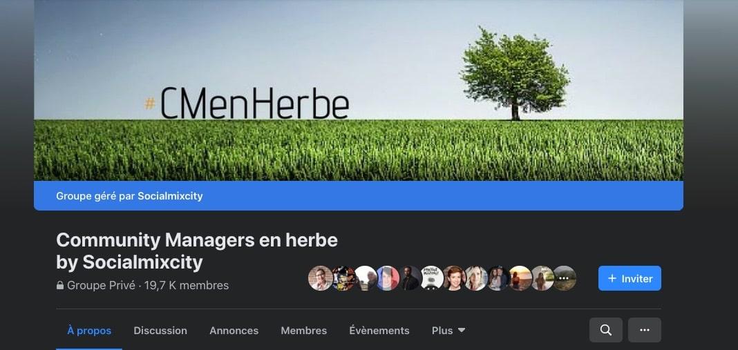 Exemple de groupe Facebook : CM en herbe